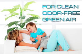 ozone for home odor and mold air purification